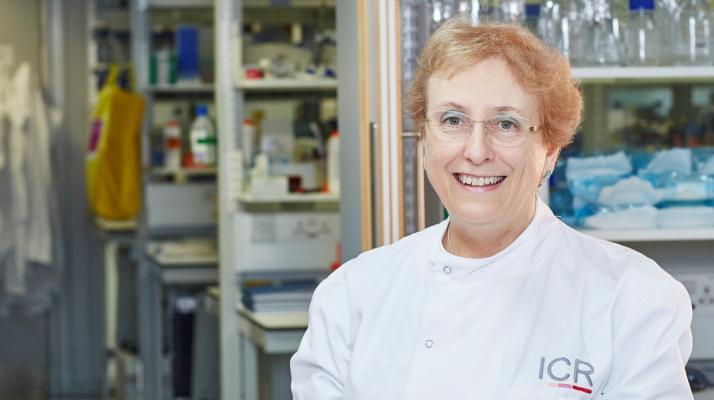 Professor Ros Eeles, Prostate Cancer Theme Lead